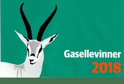 gaselle_2018_web-1